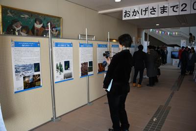 考古博制作のパネル展示コーナーの写真