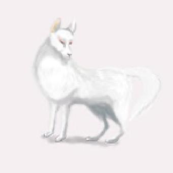 およし狐(白色の狐)のイメージ画像