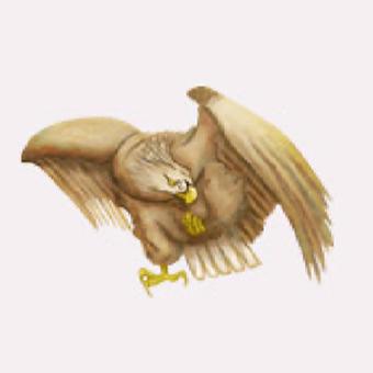ソランジンが姿を変えた大鷲のイメージ画像