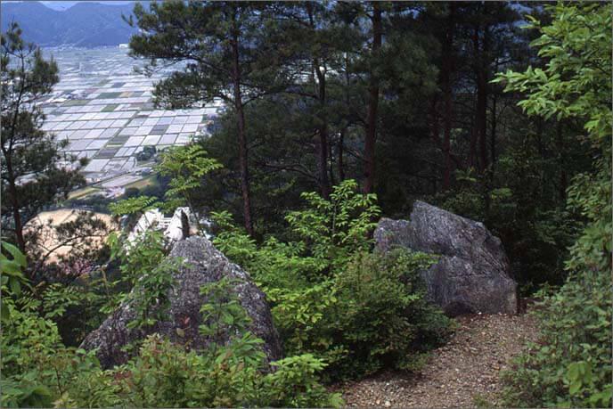 城山からの眺望の画像