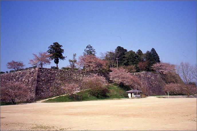 石垣全景/右端に天守台の画像