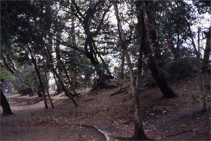猪名野神社に残る土塁の画像