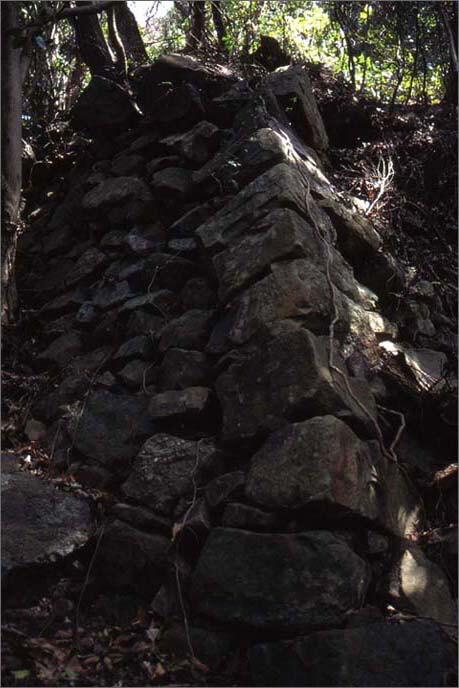 城山の山腹にある「登り石垣」の画像