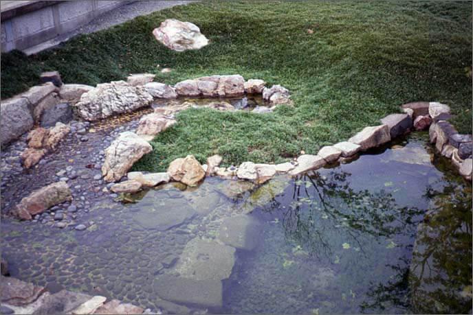 発掘整備された本丸庭園の画像(坪庭(つぼにわ)の池)