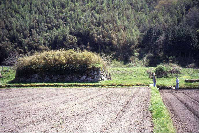 城山麓に残る石垣の画像