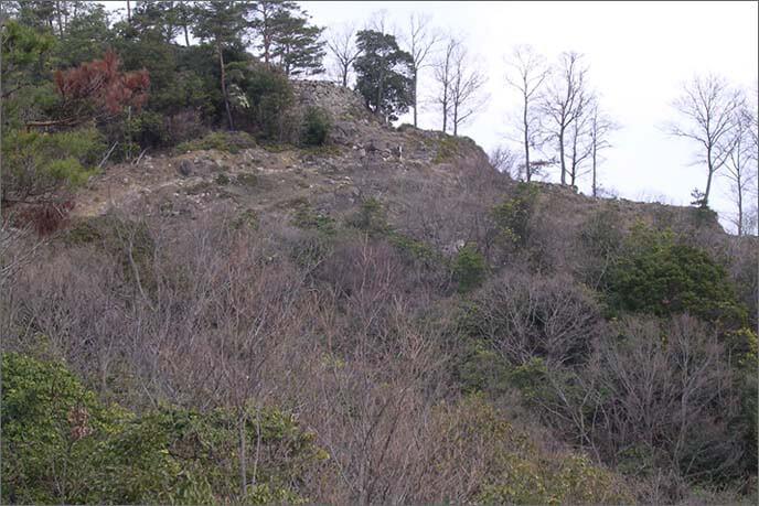 感状山(かんじょうせん)城