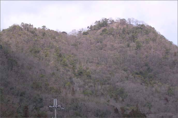 感状山(かんじょうせん)城の遠望