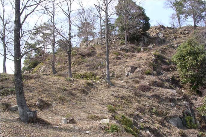 南曲輪の状況 雛壇(ひなだん)状の曲輪(くるわ)に石積みが見え隠れしています。