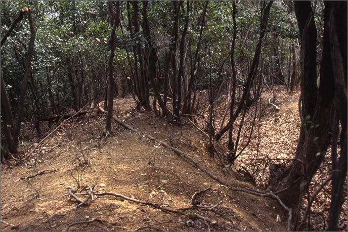 竪堀(たてぼり)と土塁(どるい)の画像