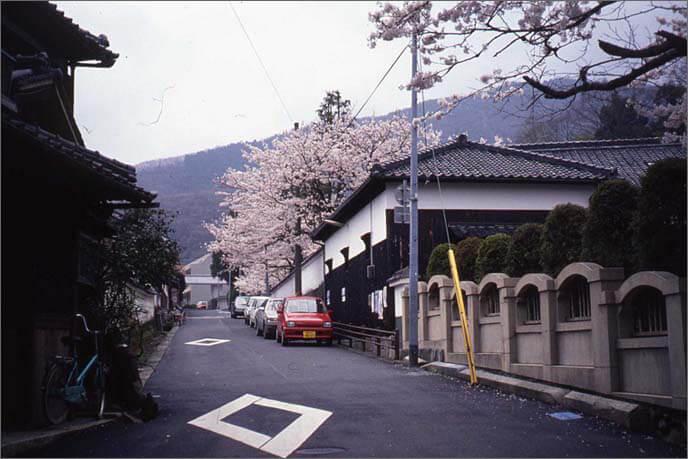 桜の木と城下の風景