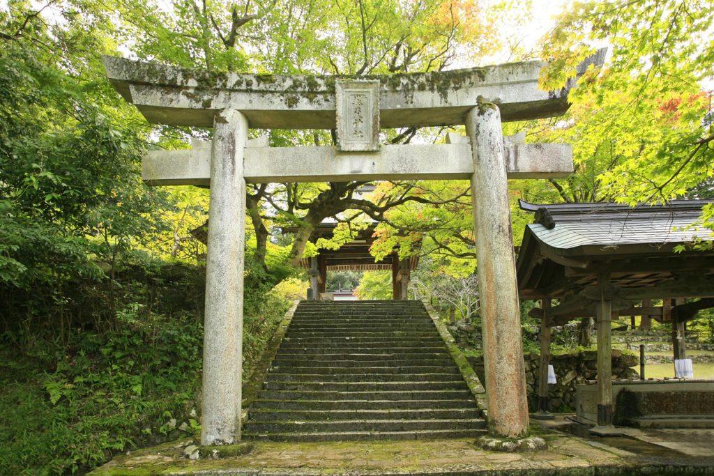 養父神社(鳥居)