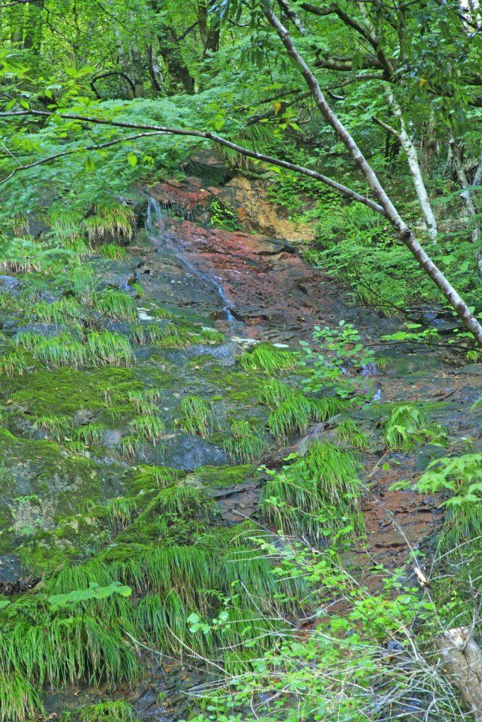 岩壁を流れ落ちる水