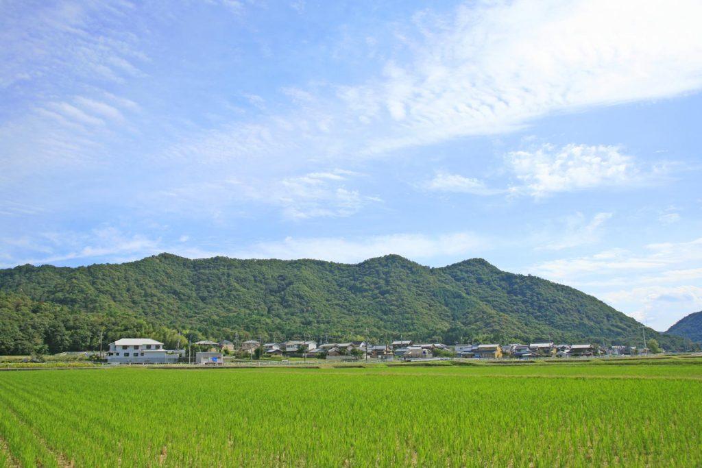 峰相山(遠景)
