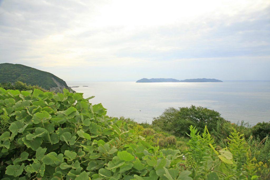 沼島(遠景)
