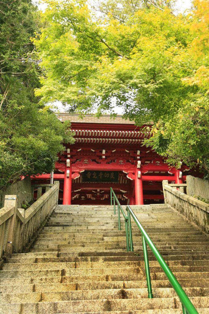 千光寺 階段を上る