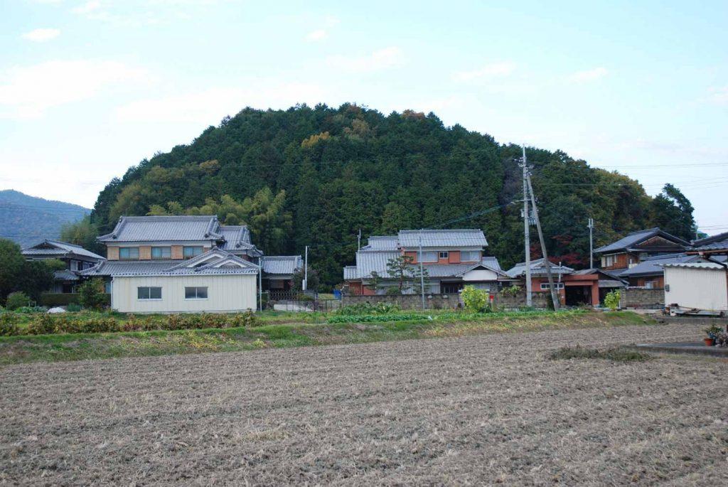 太子山 (茂利では丸山とも呼ぶ)