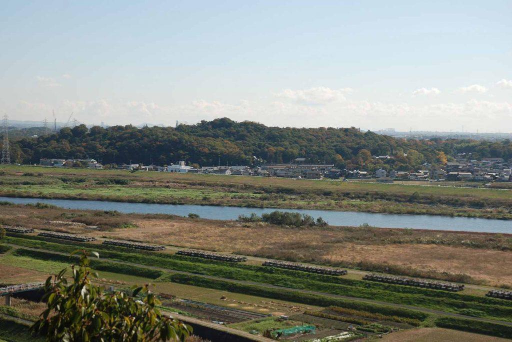 祠から見た日岡山