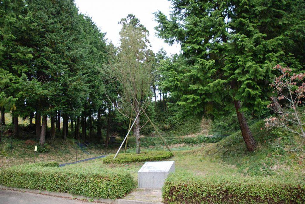 池の沢 おりゅう柳跡