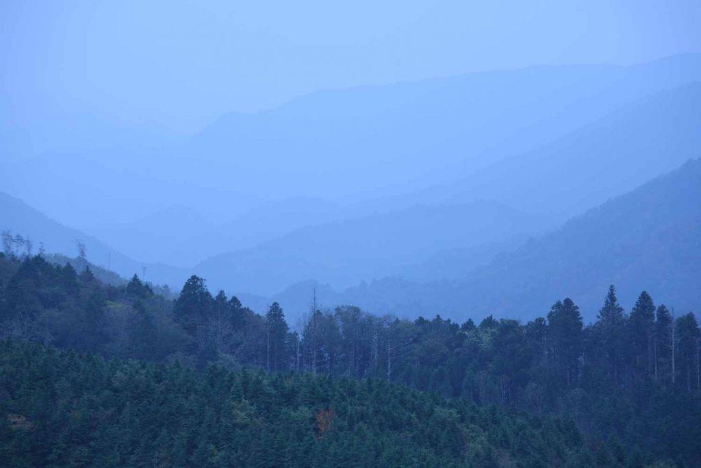 尾根からの眺望(播磨方面)の写真