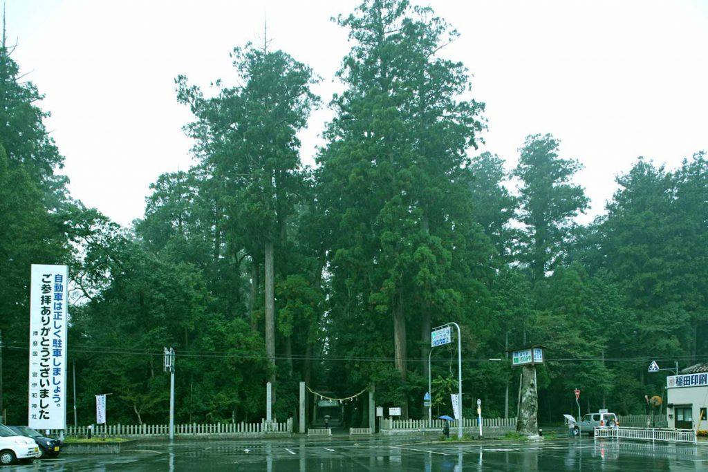 東側の参道の写真