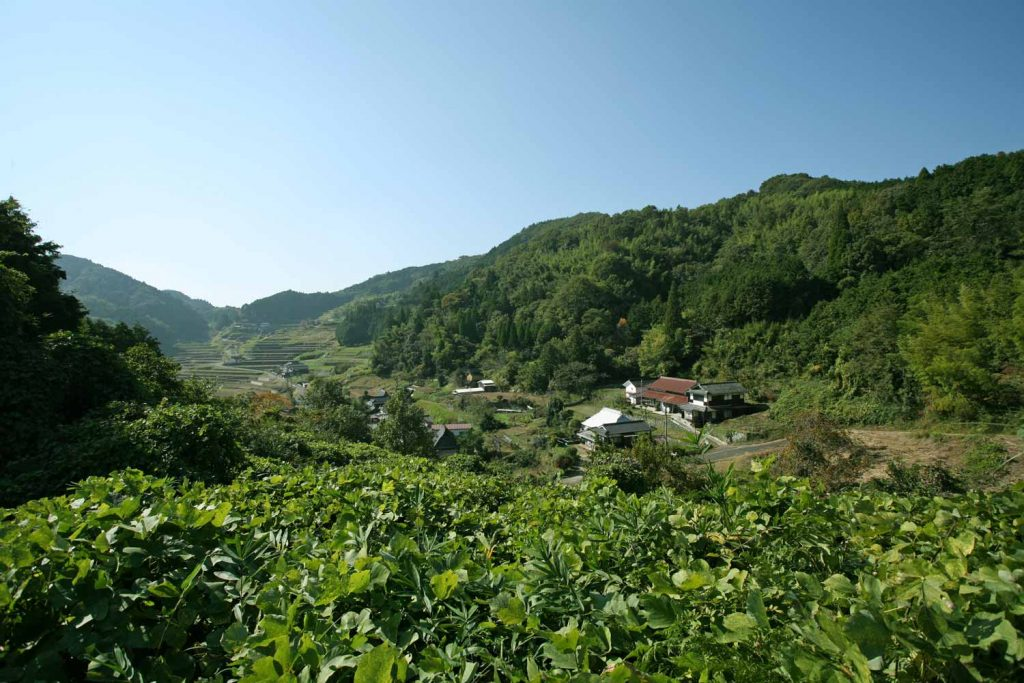 道満塚から見た山並みと棚田