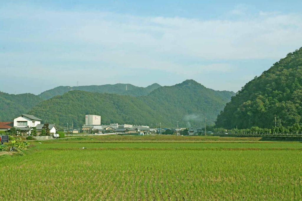 2感状山城(遠景:南から)