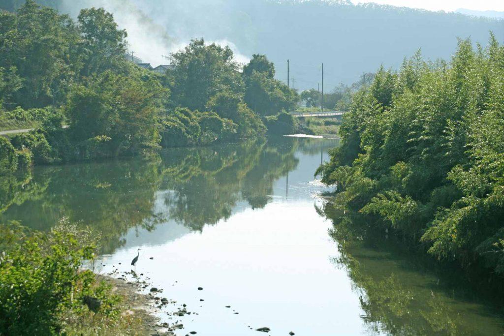 佐用川の流れ